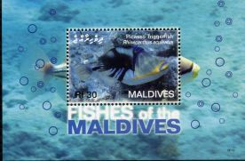 Maldives032.JPG