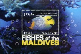Maldives036.JPG